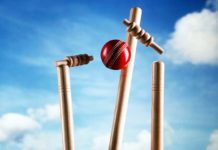 cricket betting