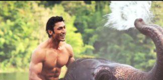 Vidyut Jammwal film 'Junglee'