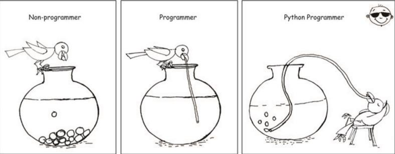How simple is Python to learn