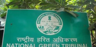 NGT panel told to submit report on unscientific handling of plastic