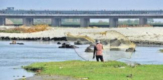 NGT to probe into alleged illegal sand mining in Yamuna River