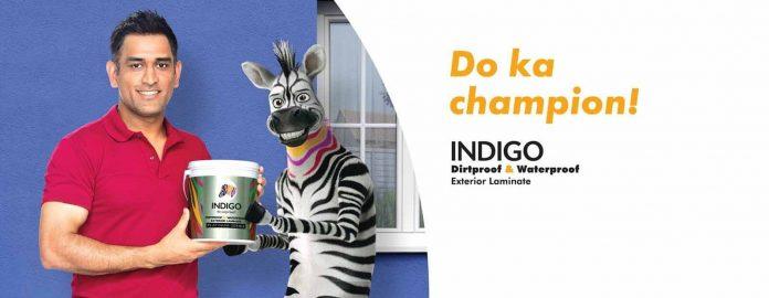 Indigo-Paints-IPO